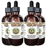 Yuan Zhi (Polygala Tenuifolia) Tincture, Dried Root Liquid Extract, Yuan Zhi, Glycerite Herbal Supplement 4x4 oz