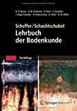 img - for Scheffer/Schachtschabel: Lehrbuch der Bodenkunde book / textbook / text book