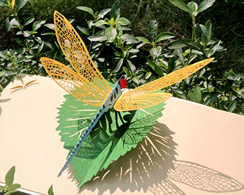 CUTPOPUP | Dragonfly | 3D Pop Up All Occasion Greeting Card | Delightful Dragonfly Design Makes a Lovely Gift Card for Mother's Day | With ()
