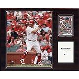 MLB Matt Adams St. Louis Cardinals Player Plaque, Brown, 12 x 15-Inch