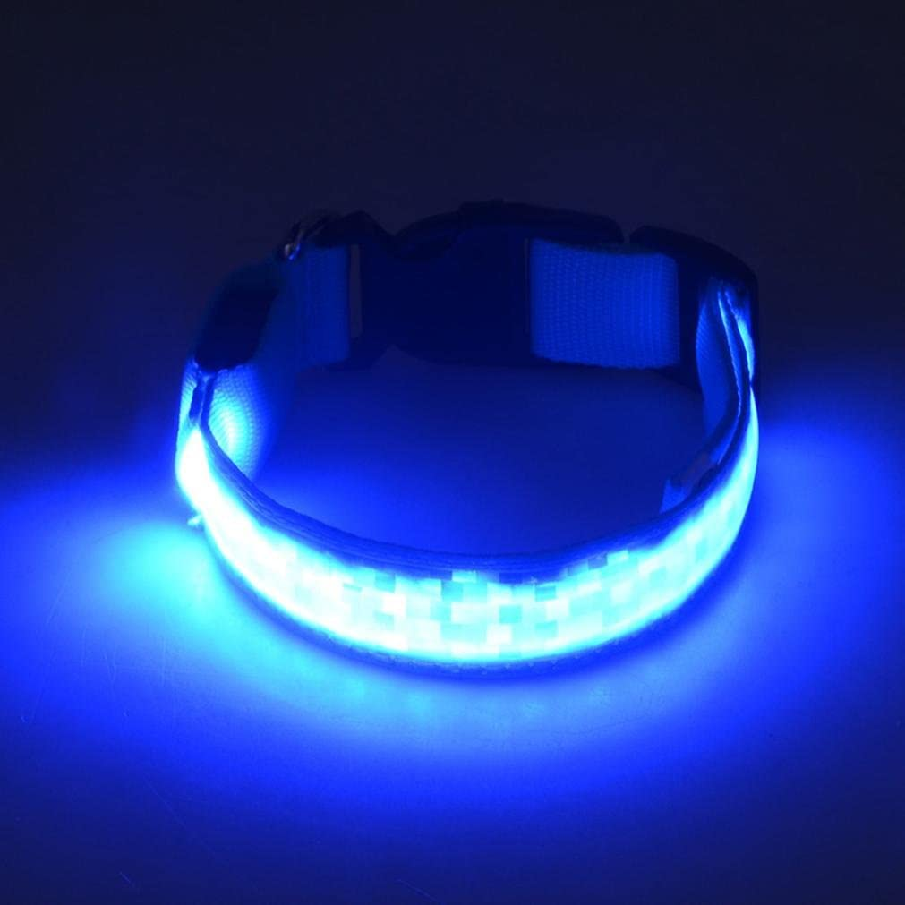 Blue, S Collar ????Smdoxi Reflective LED Light Band Glow Bracelet Collar Glow In The Dark For Pet!!Yes!!