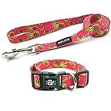 azuza Dog Collar and Leash Set,Adjustable Nylon Collar with Matching Leash,Pineapple,Small