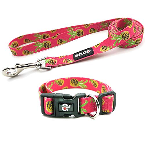 azuza Dog Collar and Leash Set, Cute Fruit Patterns, Adjustable Nylon Collar with Matching Leash for Small Medium and…