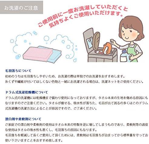 ジャパンネット ホワイト フェイスタオル デイリータオル Daily Towel 毎日使いやすい DF001 2枚入 2個セット