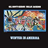 Winter in America [12 inch Analog]