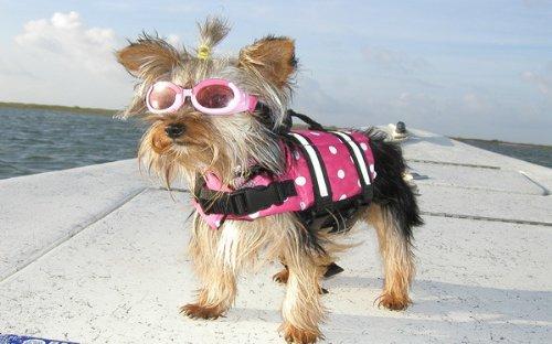 Yosoo Dog Life Jacket Pet Life Preserver with Reflective Stripes Vest Saver Coat Flotation Float Life Jacket Aid Buoyancy for Doggy (XXS, Rose) (XXS) by Yosoo