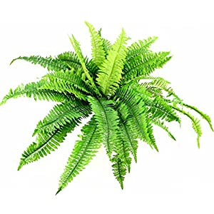 Admired By Nature GG4617-DK.GN-2 42 Leaves Artificial Boston Fern Bush -2 Pieces Dark Green 82