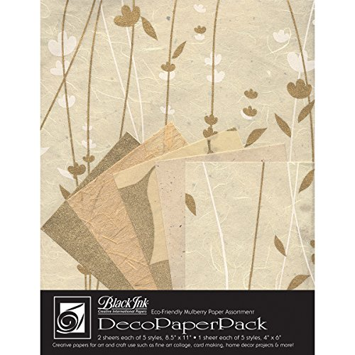 Black Ink Decorative Papers - Black Ink Decorative Paper Pack, 8.5 by 11-Inch, Meadow Flowers Cream