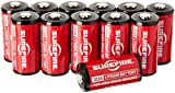 Surefire 6 Pack 123A Lithium Batteries