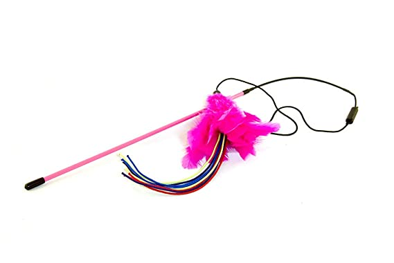 Amazon.com : Kung Fu Kitty Firecracker Feather Canip Toy Pack : Pet Supplies