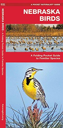 Nebraska Birds: A Folding Pocket Guide to Familiar Species (A Pocket Naturalist Guide)