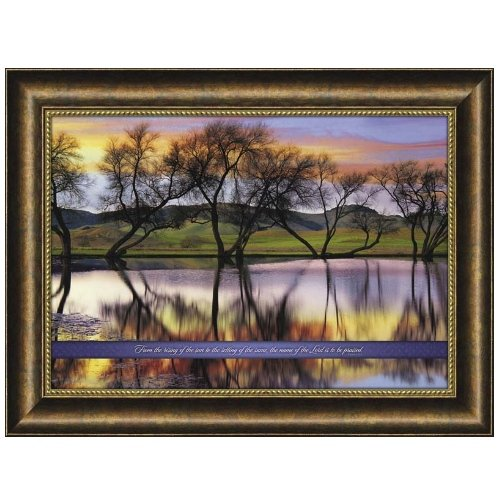 Carpentree From The Rising of The Sun Framed Art by Carpentree