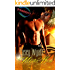 Mystic Hero (The Mystic Series Book 3)