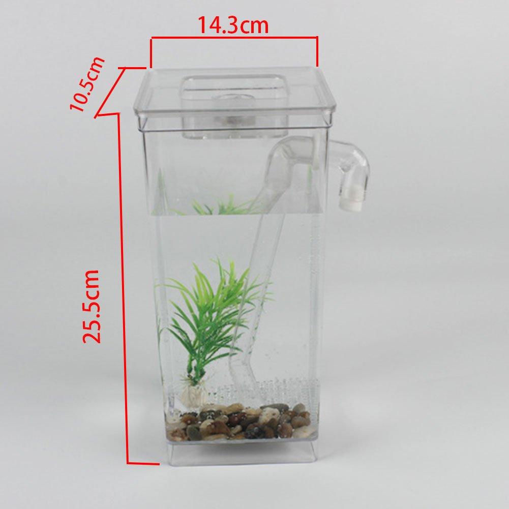 ZAK168 - Depósito de Cocina para Acuario (tamaño pequeño, autolimpiable, descontaminante), diseño de pecera: Amazon.es: Productos para mascotas
