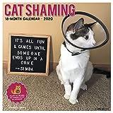 Cat Shaming 2020 Wall Calendar