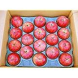 北斗リンゴ 5kg(18玉)北海道産ほくとりんご【期間限定】11月下旬 【出荷元:北海道四季工房】