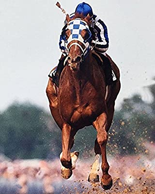 Secretariat Wins Kentucky Derby 8 x 10 Classic Old Photor Vintage Classic Rare Find