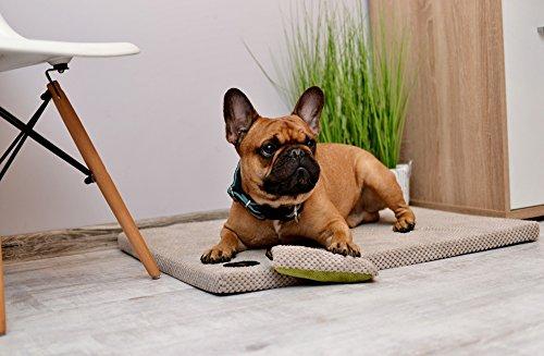 Lauren Diseño Demi 50 cm x 40 cm x 3 cm Color Rosa Acolchada   cama para perros   perro Cojín   Espacio Dormir para perros grandes y pequeñas   Liegematte: ...
