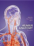 Human Anatomy (2-downloads)