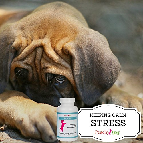 DogCalm-Mood-Stabilizing-Calming-Supplement-Supports-Nervous-System-to-Reduce-Stress-Tension-Experienced-by-Travelling-Fireworks-Loud-Noises-Storms-Separation-Anxiety-Training-Changes