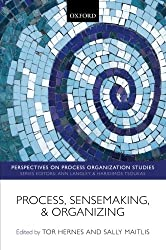 Process, Sensemaking, and Organizing (Perspectives on Process Organization Studies)