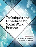 Techniques and Guidelines for Social Work Practice 9780205965106