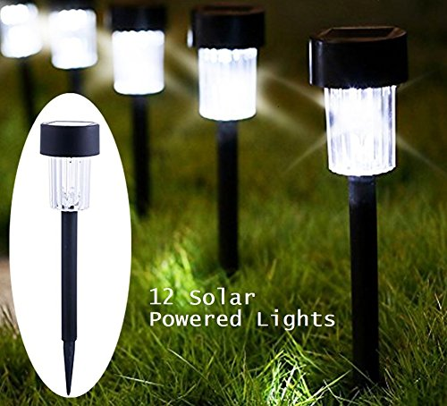 Lightscape Landscape Lighting