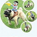 WMSTUDIO Pet Dog Halloween Cowboy Funny Costume Dog knight Riders Clothes