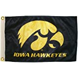 NCAA Iowa Hawkeyes Boat and Golf Cart Flag