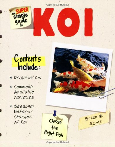 the-super-simple-guide-to-koi