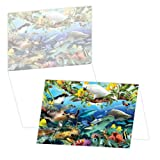 ECOeverywhere Aquarium of the Pacific Boxed Card Set, 12 Cards and Envelopes, 4 x 6-Inches, Multicolored (bc12658) offers