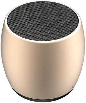 FENWEI TWS for los pequeños Altavoces de la Caja del Altavoz Bluetooth Regalos uno con Dos Altavoces inalámbricos Bluetooth pequeña de Metal de Acero (Color : Gold): Amazon.es: Electrónica