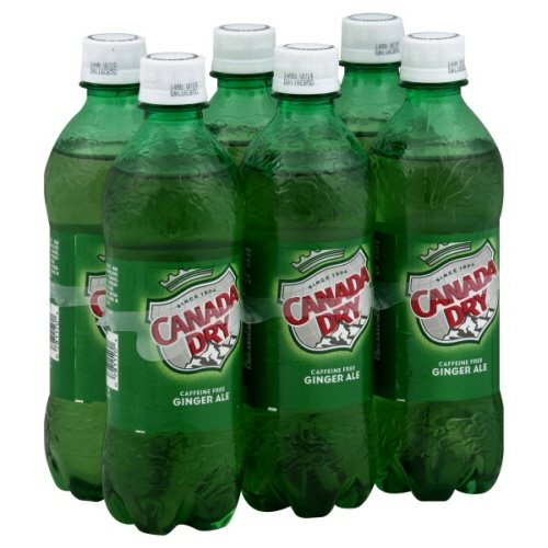 canada-dry-ginger-ale-169-oz-24-pack