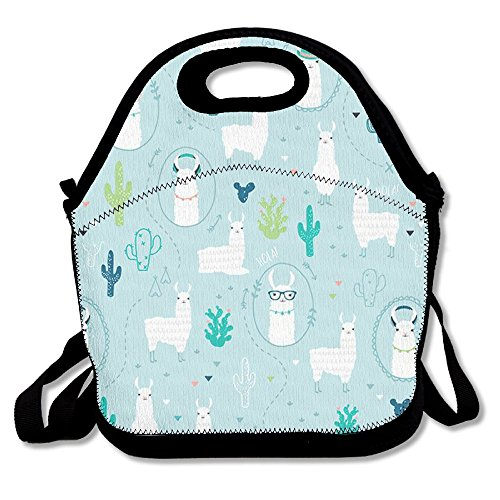 HYEECR Llama Pattern Portable Lunch Tote Bags, Takeaway Lunch Box, Outdoor Travel Fashionable Handbag For Men Women Kids (Adult Freddy Vinyl Mask)