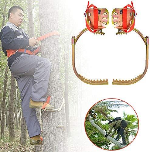 ギアツリークライミングスパイクセット-狩猟観察ピッキングフルーツ用ツリークライミングツール-ノンスリップクライミングツリースパイク、電気技師クライミングツリーフットバックル、使いやすい,350type