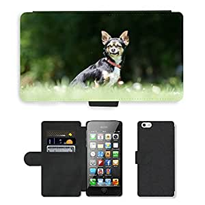 PU LEATHER case coque housse smartphone Flip bag Cover protection // M00109329 Chihuahua Tres color Pequeño // Apple iPhone 5 5S 5G