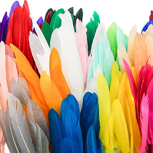 TOAOB 250pcs 19 Color Natural Goose Feathers 4 to 6 Inch for DIY Crafts Wedding Home Party Decorations and Jewelry Making