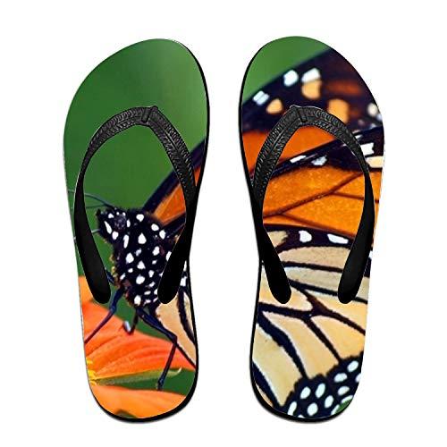 Monarch Butterfly Design Fashion Women's Men's Classical Flip Flops