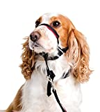 Halti Head Collar, Adjustable Head Halter Collar