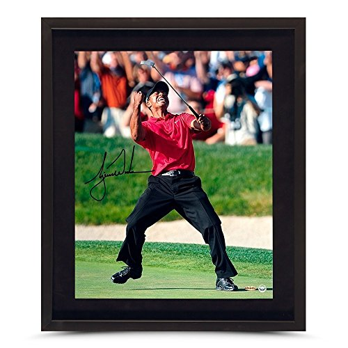 Tiger Woods Autographed Us Open Champ Picture 16x20 Framed - Upper Deck Authentic