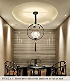 New Chinese small bird chandelier personality restaurant living room Pendant Lights corridor aisle ceramic iron led lamps TA0123PY23 ( Color : Black )