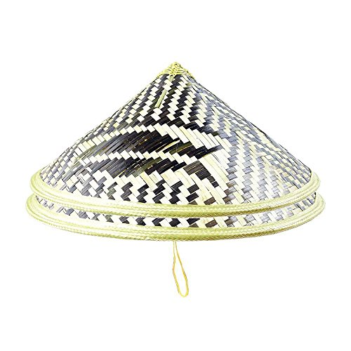 Sunny Hill Pack of 2 Chinese Oriental Bamboo Fish Pattern Straw Cone Garden Fishing Hat -