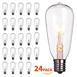 24-Pack Edison Replacement Light Bulbs,7-watt E17 Candelabra Screw BaseST40 Replacement Clear Glass Light Bulbs for Outdoor Patio ST40 String Lights, Warm White