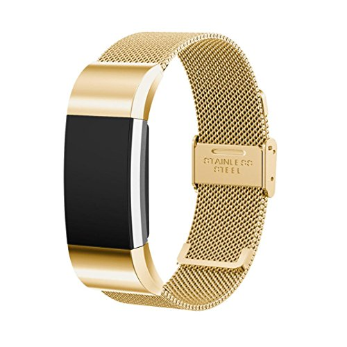 Transer Milanese Magnetic Loop Stainless Steel Quick Release Fit Strap Bracelet Replacement Band Wristband Accessories for Fitbit Charge 2 (Gold) by Transer