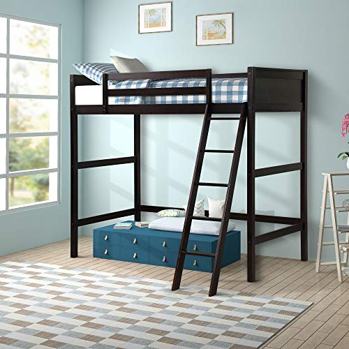 Harper&Bright Designs Panel Style Solid Wood Loft Bed,Side Angled Ladder (Espresso)
