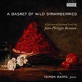 Basket of Wild Strawberries
