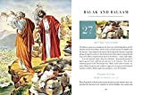 50 Bible Stories Every Adult Should Know: Volume