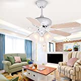 ZPSPZ Ceiling fan Remote Controlled Ceiling Fan Lamp In Northern Europe