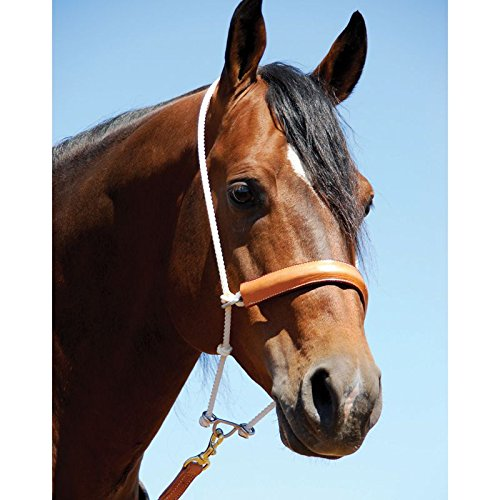 (Martin Leather Covered Double Rope Noseband)