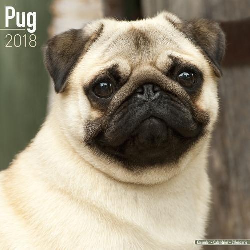 Pug Calendar - Dog Breed Calendars - 2017 - 2018 wall Calendars - 16 Month by Avonside ebook